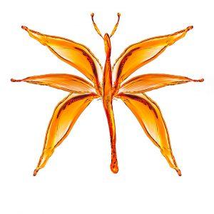 Motyl z chlapnięć wody - Orbin